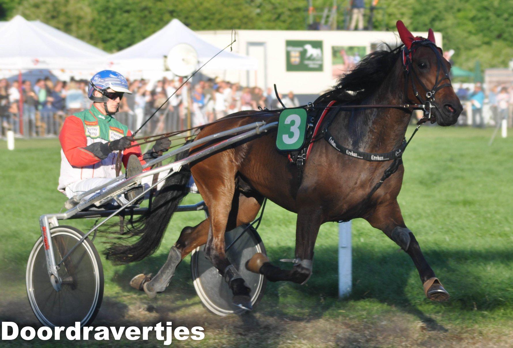 Eindstanden Alkmaar Iyan Stardust en Hulk Vryenesse de beste paarden!