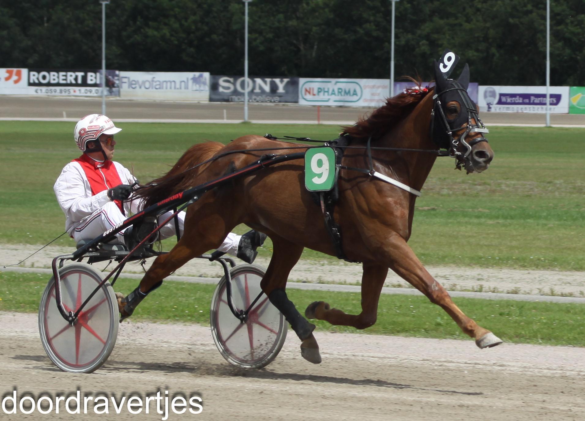 Standen Wolvega, Droit au Coeur beste paard!