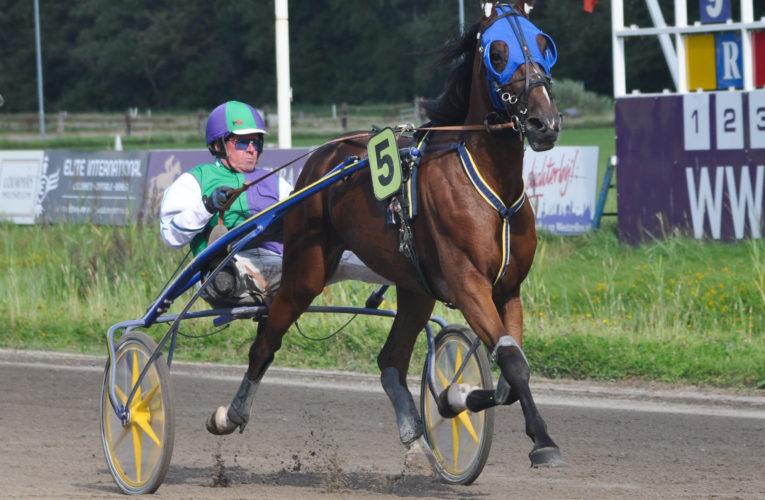 Standen Duindigt, Kentucky Lobell beste paard!